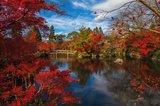 Japans meer met brug tuinposter