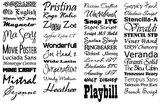 Set van 8 deurstickers. Kies je eigen lettertype en kleur._
