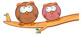 Crazy owls 1 (gekke uilen) full color muursticker_