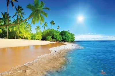 Zon, zee & strand tuinposter