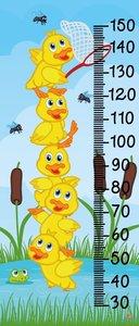 Gele eendjes groeimeter