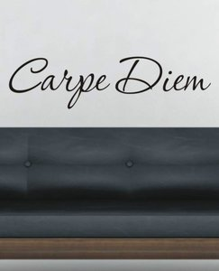 Carpe Diem. Muursticker / Interieursticker