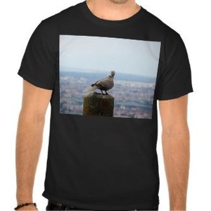 Heren T-shirt of polo  met je eigen afbeelding of foto